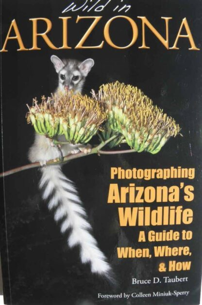 Wild in Arizona; Photographing Arizona's Wildlife – A Guide to When, Where, & How