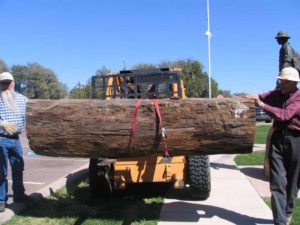 "Christopher's ""hog log"" arrives at the museum."